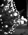 Šumy Vianoc...