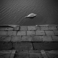 Pod vodu