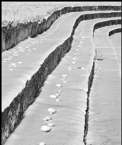 Cesta zaviata