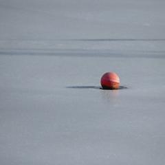 Doba ľadová