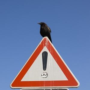 Iné nebezpečenstvo :)