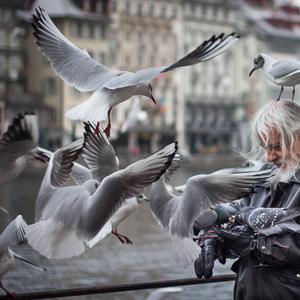 pán vtákov