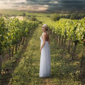 Vo viniči