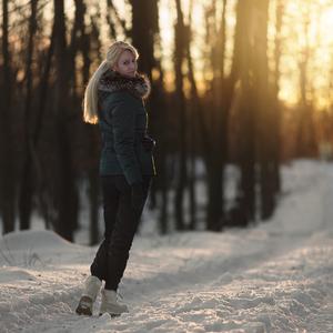 V zimnom lese