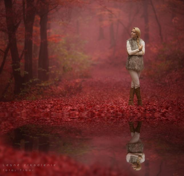 Lesné zrkadlenie
