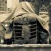 traktorko
