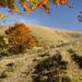 Najkrajší kopec vo Veľkej Fatre