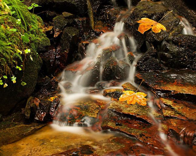 Banský potok