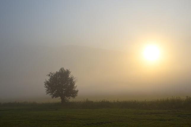 Strážca slnečného svitu