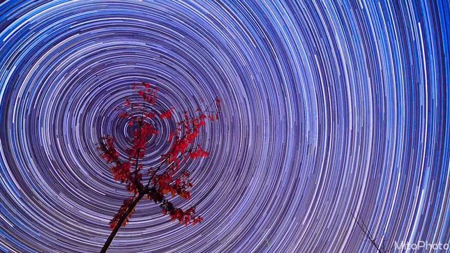 Cesta hviezd