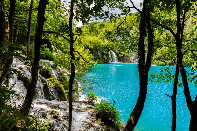 Lesny vodopad