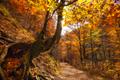 Jeseň v Kvačianskej