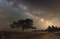 Strážca pod nočnou oblohou