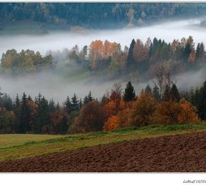 Jesenné vrstvenie