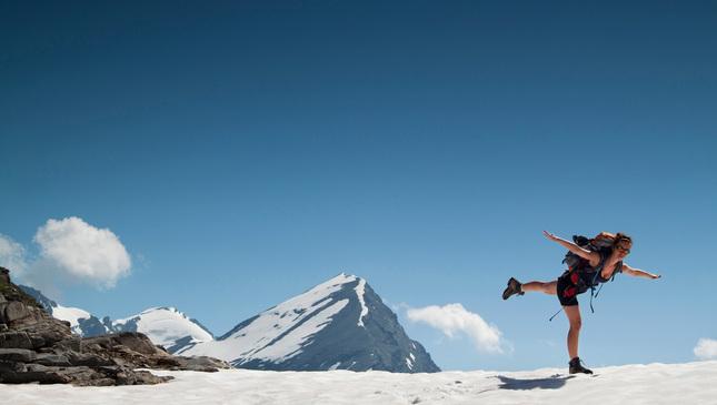 Lastovička v Alpách