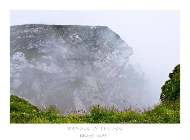 Wander in the fog