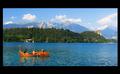 Pure Nature at the Lake