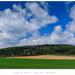 jarné polia, obloha modrá