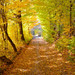 Vyhne - jeseň