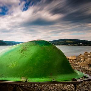 Veľryba Zelená