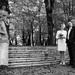 The Wedding Day2