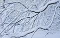 Pod snehom