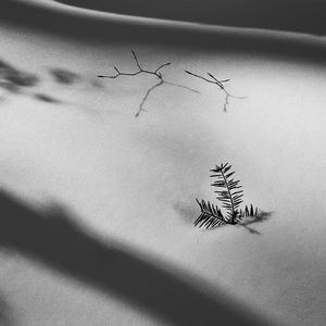 Snehom zaviate