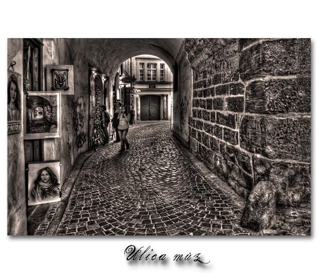 Ulica múz