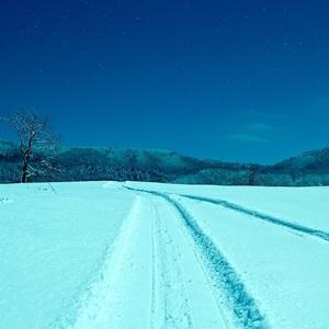 Zimna