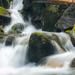Rohacsky potok