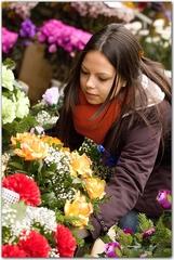 dievča  pri kvetinách ll.