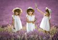 Tri sestry