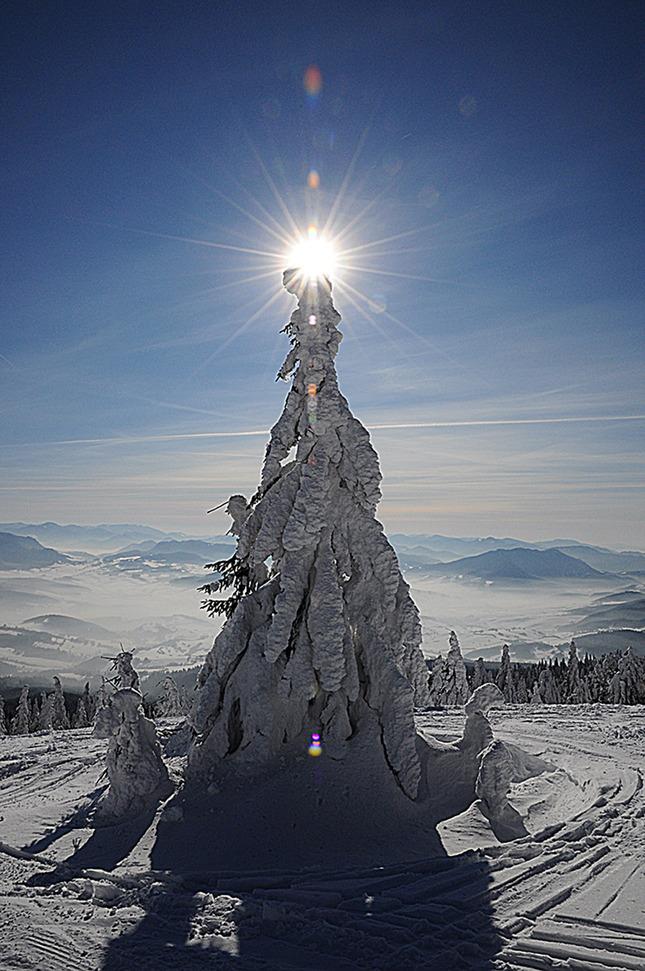 Oravská socha slobody