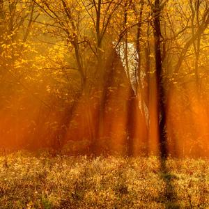 V objatí slnka