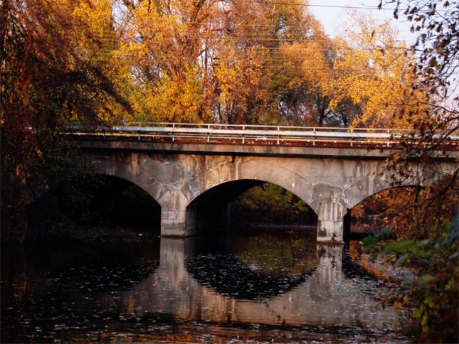Jesen_2011_pic1