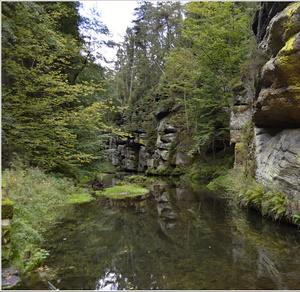 Řeka Kamenice u Dolského mlýna.