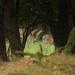 Ranajky v trave