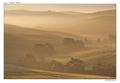 Belveder v rannej hmle