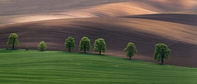 Kouzlo Jižní Moravy