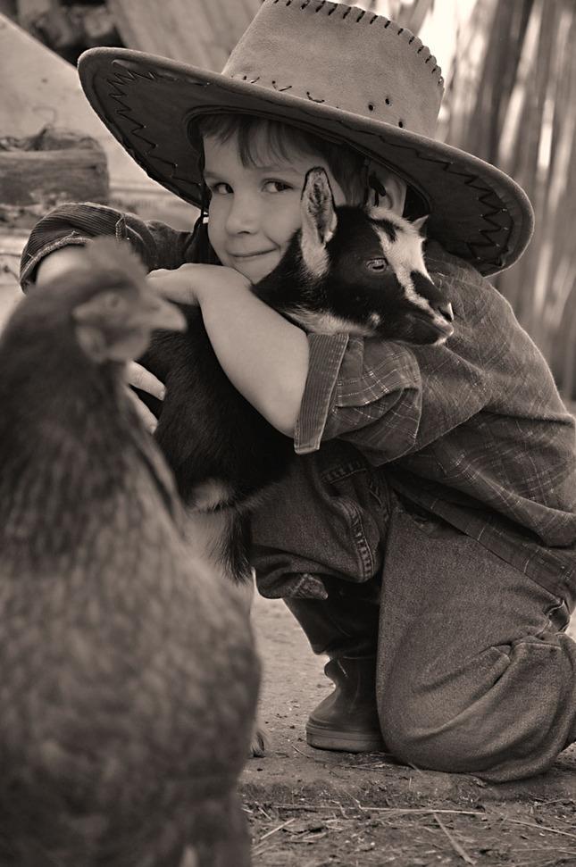 farmár hľadá kozu :)