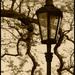 Pouličná lampa