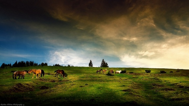 Romania (Sunset)