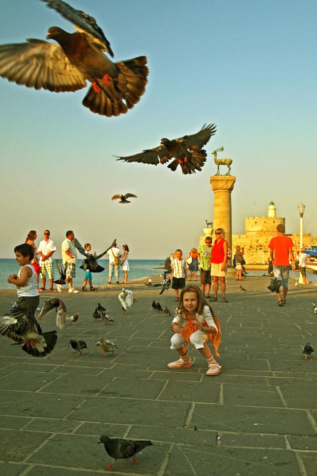 Vtáky a jeden zo 7 divov sveta