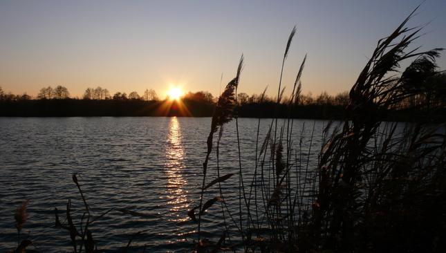 Západ nad rybníkem