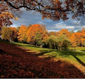 Jesenné premeny