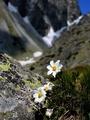 Na potulkách Tatrami