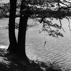 Pri Počúvadlianskom jazere