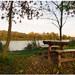 Jesen pri rybníku