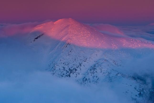 Ružová hora ...
