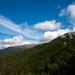Sivé Oblaky